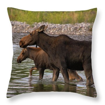 Throw Pillow featuring the photograph Mom And Baby Moose River Crossing by Mary Hone