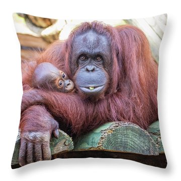 Mom And Baby Orangutan Throw Pillow by Stephanie Hayes