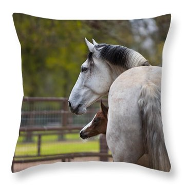 Throw Pillow featuring the photograph Mom And Baby by Sharon Jones