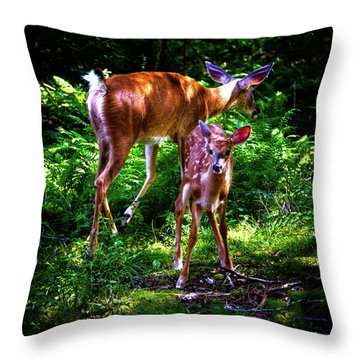 Throw Pillow featuring the photograph Mom And Fawn by David Patterson