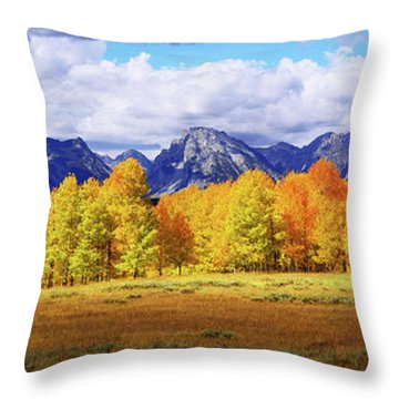 Grand Tetons Throw Pillows