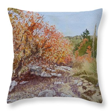 Moment In The Sun - Crossing Tejas Creek Throw Pillow