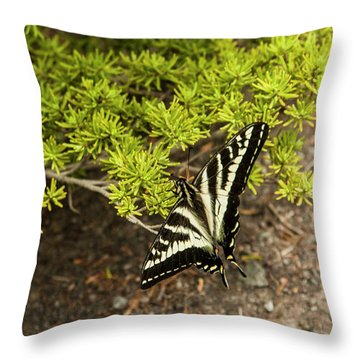 Momentary Rest Stop Throw Pillow