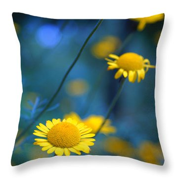 Momentum 04a Throw Pillow by Variance Collections