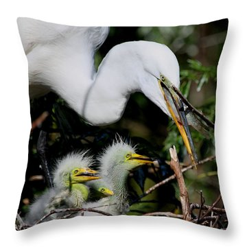 Throw Pillow featuring the photograph Momma Took Our Food by Barbara Bowen