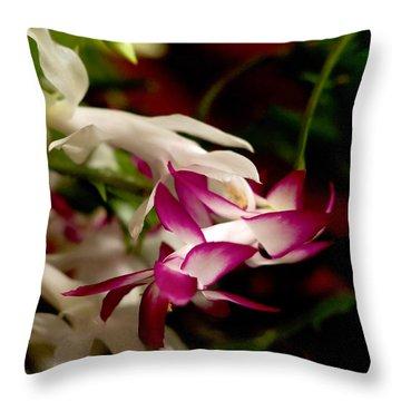 Momma's Christmas Cactus Throw Pillow by B Wayne Mullins