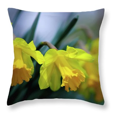 Throw Pillow featuring the photograph Mom's Daffs by Lois Bryan