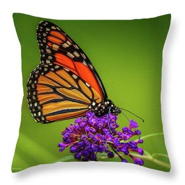 Monarch #1 Throw Pillow