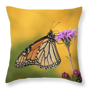 Monarch 2016-3 Throw Pillow