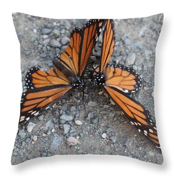 Monarch Afterglow Throw Pillow