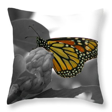 Monarch At Rest Colorized Throw Pillow