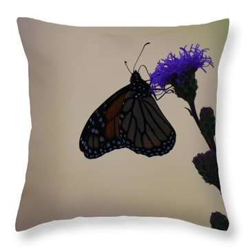 Throw Pillow featuring the photograph Monarch Beauty by Ramona Whiteaker