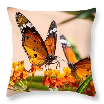 Monarch Butterfly Throw Pillow by Arik Baltinester