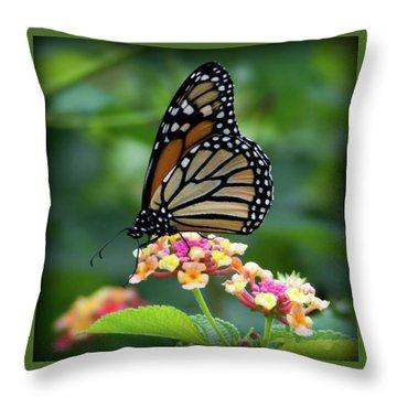 Monarch Butterfly Art II Throw Pillow