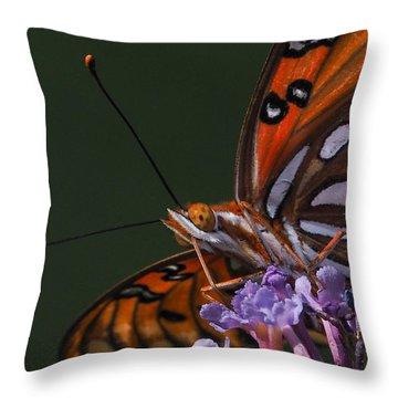 Monarch Butterfly Closeup Throw Pillow