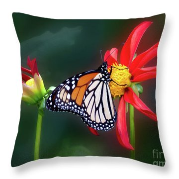Monarch Butterfly Feasting On Dahlia 'kkk Katie' Throw Pillow