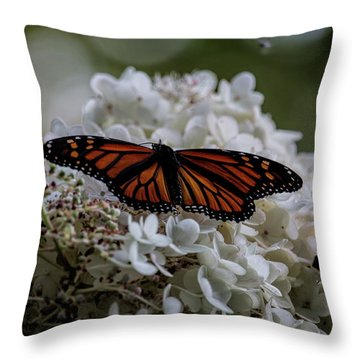 Monarch Butterfly Feeding On Hydrangea Tree Throw Pillow