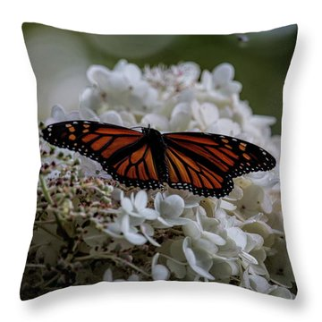 Monarch Butterfly Feeding On Hydrangea Tree Throw Pillow