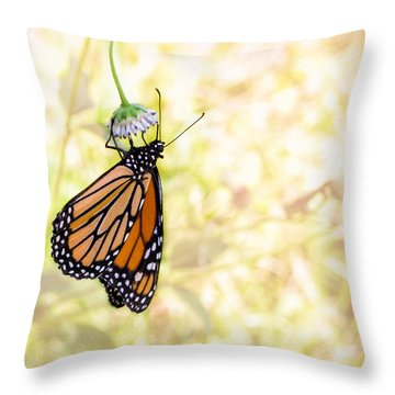 Monarch Butterfly Hanging On Wildflower Throw Pillow