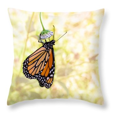 Throw Pillow featuring the photograph Monarch Butterfly Hanging On Wildflower by Louise Lindsay