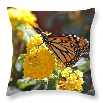 Monarch Butterfly On Lantana Throw Pillow