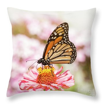 Monarch Butterfly On Pink Throw Pillow