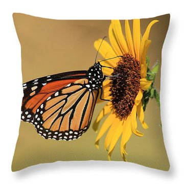 Throw Pillow featuring the photograph Monarch Butterfly On Sun Flower by Sheila Brown