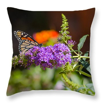 Monarch Butterfly On The Butterfly Bush Throw Pillow