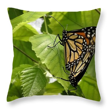 Monarch Duo Throw Pillow