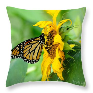 Monarch Gold Throw Pillow