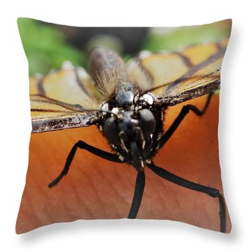 Monarch Greeting Throw Pillow