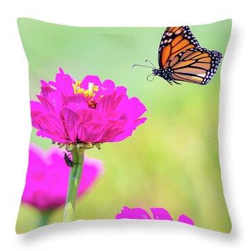 Monarch In Flight 1 Throw Pillow