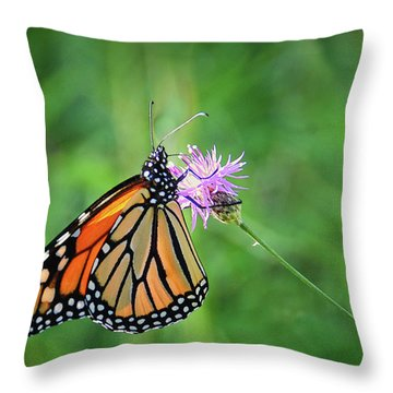 Monarch In The Meadow Throw Pillow