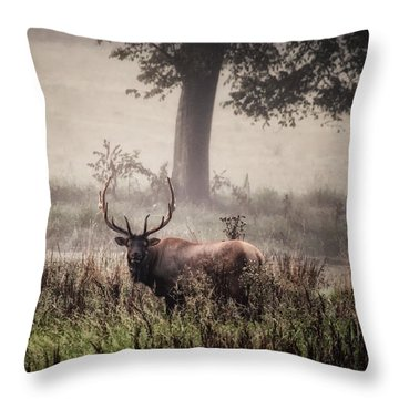 Throw Pillow featuring the photograph Monarch In The Mist by Michael Dougherty