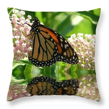 Throw Pillow featuring the photograph Monarch Lunch by Rick Friedle