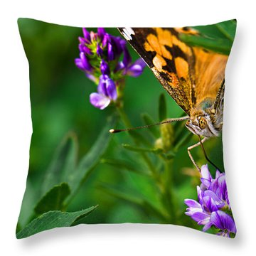 Monarch Throw Pillow