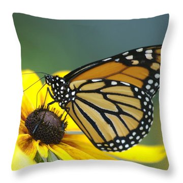 Monarch Throw Pillow by Michael Peychich