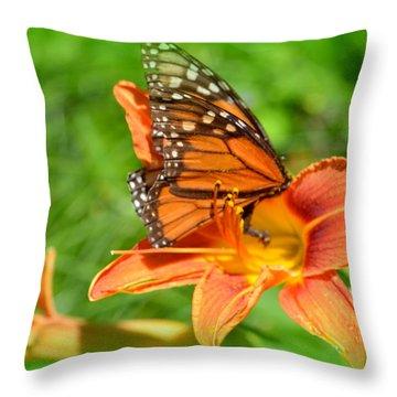 Monarch Minutes Throw Pillow