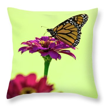 Monarch On A Zinnia Throw Pillow by Shelly Gunderson