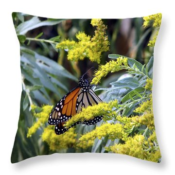 Monarch On Goldenrod 2 Throw Pillow by George Jones