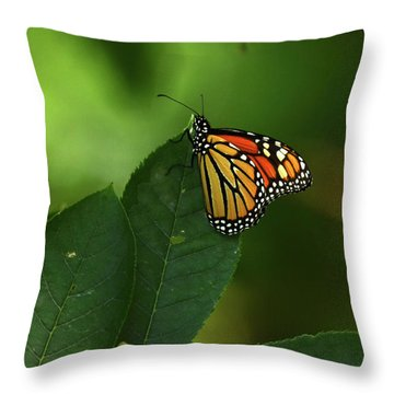 Throw Pillow featuring the photograph Monarch On Leaf by Ann Bridges