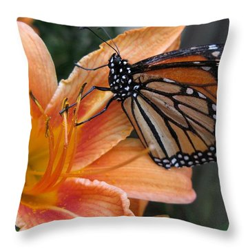Monarch On Lily Throw Pillow