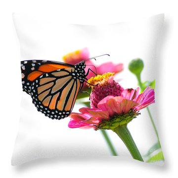 Monarch On White Throw Pillow