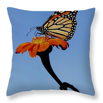 Monarch On Zinnia  Throw Pillow