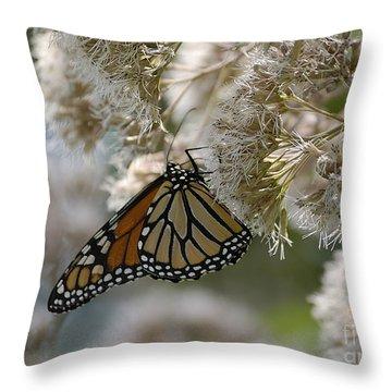 Monarch Pink Throw Pillow