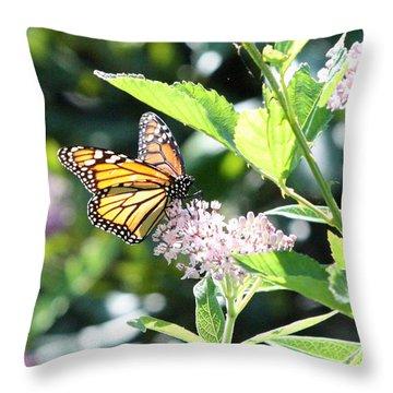 Monarch1 Throw Pillow