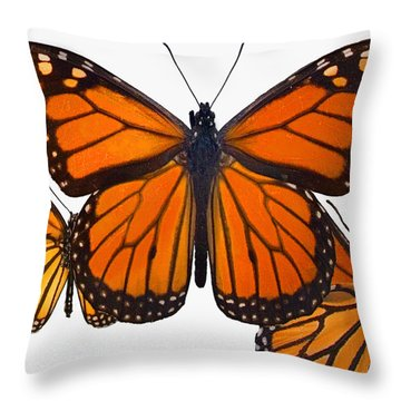 Monarchs Throw Pillow