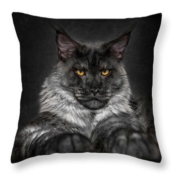 Throw Pillow featuring the photograph Monday Face. by Robert Sijka