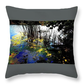 Monet Ice Age Pond Throw Pillow