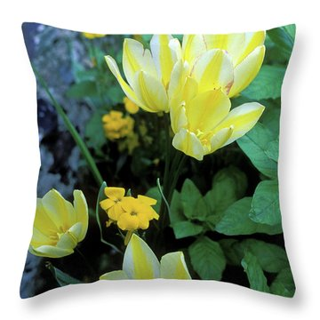 Monet's Fancy Tulips Throw Pillow by Kathy Yates